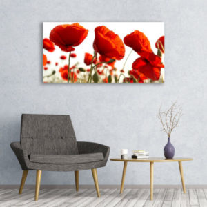 120 x 60 Red Poppies 1