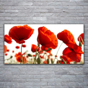 120 x 60 Red Poppies