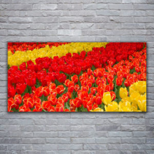 120 x 60 Flowers Red and Yellow