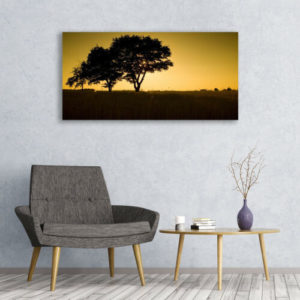 120 x 60 Sunset Trees 1