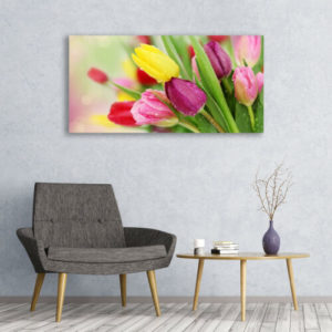 120 x 60 Colorful Tulips 1
