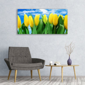120 x 60 Yellow Tulips 1