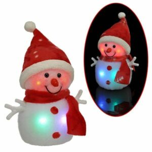 H20 Colorful Christmas Snowman